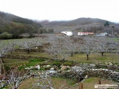 Cerezos en flor; Valle del Jerte; viajes esqui organizados viajes en nochevieja puente de semana san